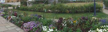006庭園