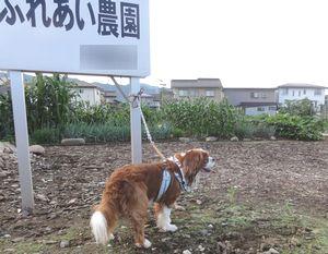 001農園