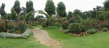 001公園
