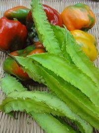 013野菜