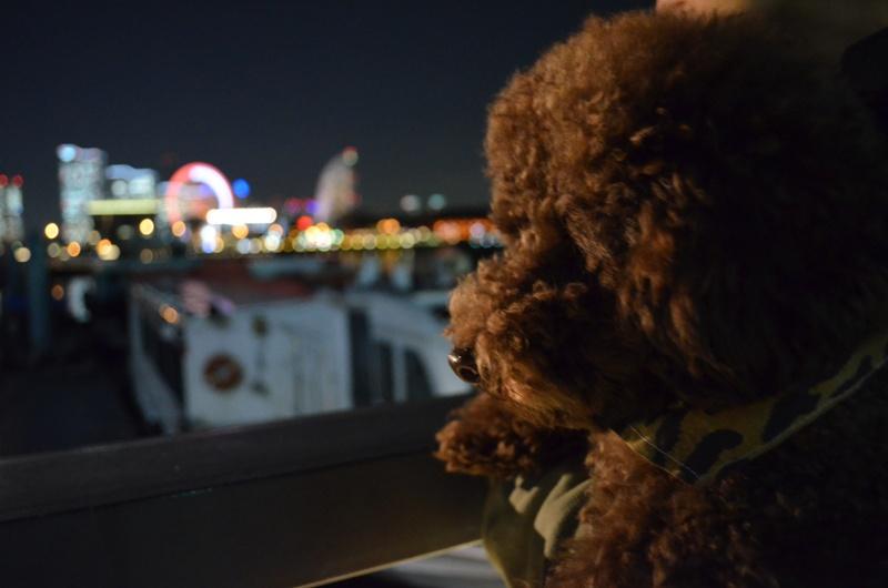 横浜夜景とチョコup