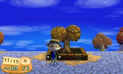 記念樹の成長