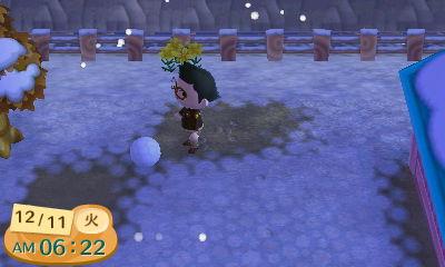 雪だま発見!