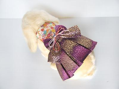 袴 白×紫01