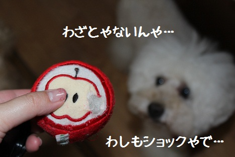 おもちゃ5