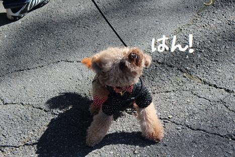 水沢観音6