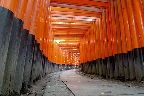 20121026_001_hushimi_08.jpg