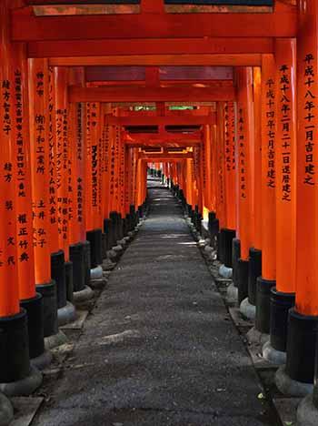20121026_001_hushimi_10.jpg