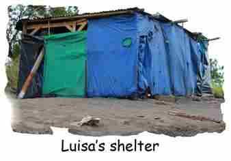 Newsletter-2014-Feb-Pic04-Luisa-Shelter.jpg