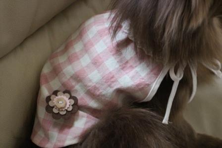 20130308お花