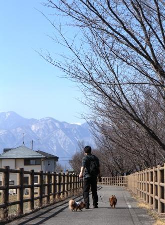 20130311お散歩1