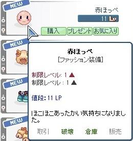 20121221_0.jpg