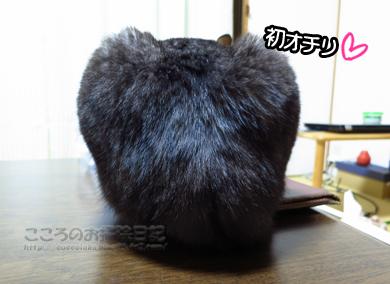 oshiriribu001-01-2013.jpg