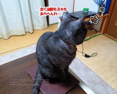 tsukueribu001-01-2013.jpg