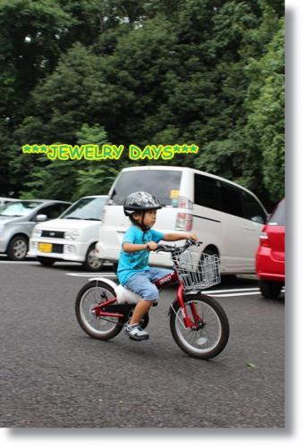 photo_355.jpg