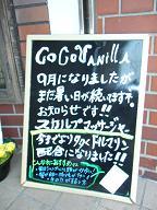 2012_1209ココバニブログ0003