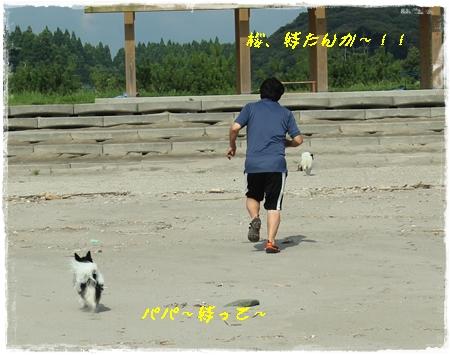 20120813_083b.jpg