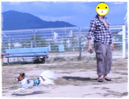 20121007_064b.jpg