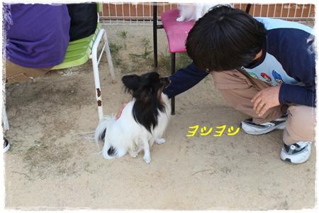20121007_106b.jpg