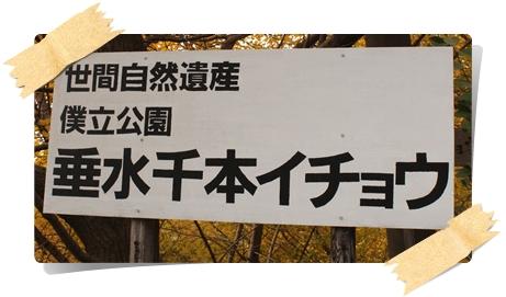 20121201_008b.jpg