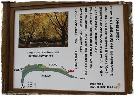 20121201_010b.jpg