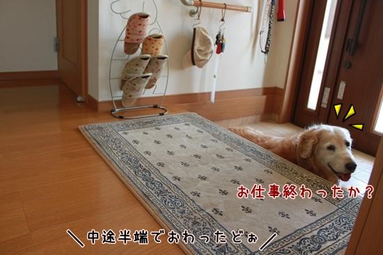 IMG_3395_R.jpg