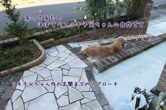 IMG_3476_R.jpg