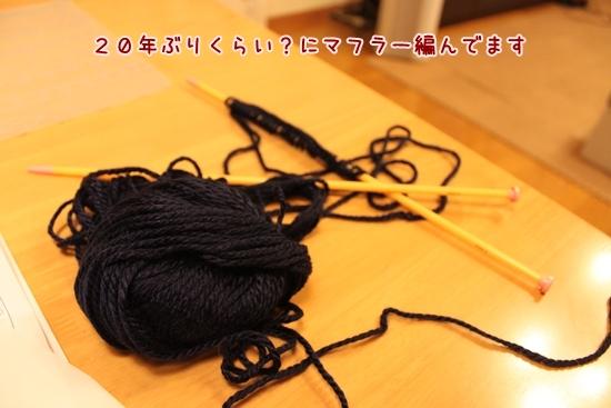 IMG_3515_R.jpg