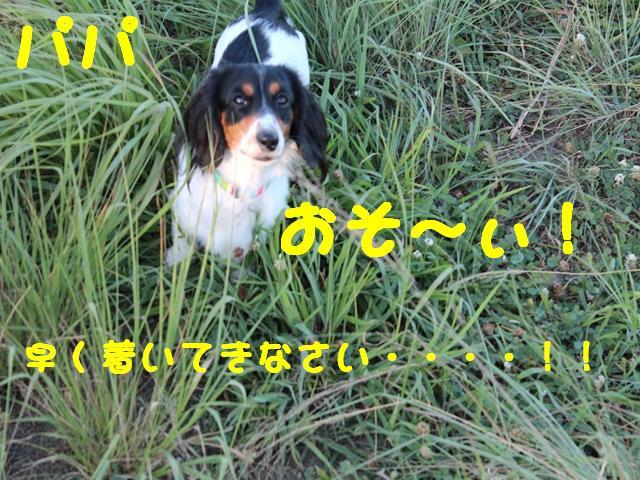 57_1001.jpg