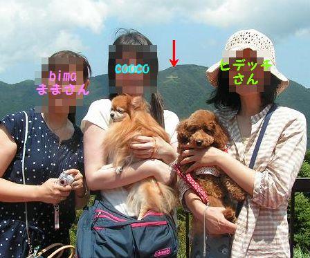 箱根の山~