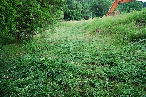 草刈できれいになった