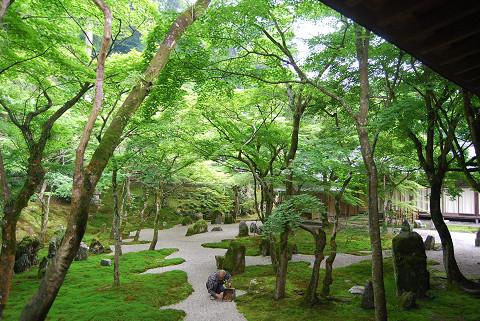 新護寺の石庭2