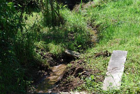 長命湿地の水路完成
