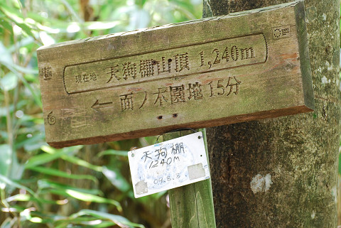 天狗棚山頂1240m