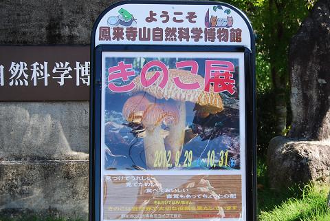 自然科学博物館きのこ展