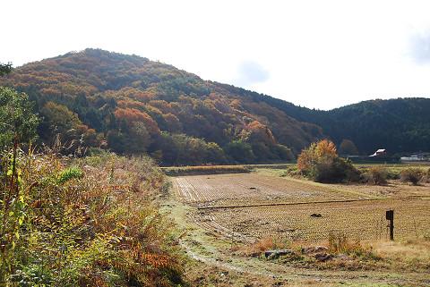 開成地区の山の紅葉