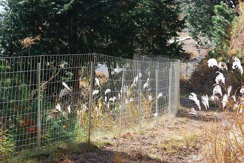 獣害防止のための金網
