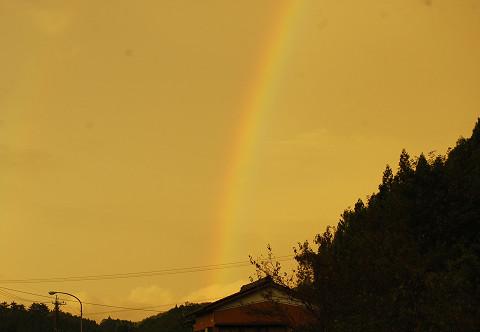 大きな虹が1