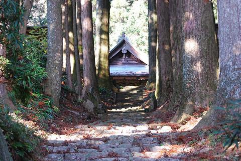 善福寺の参道石畳