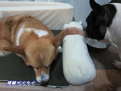 枕 (3)