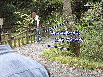 源泉 (8)