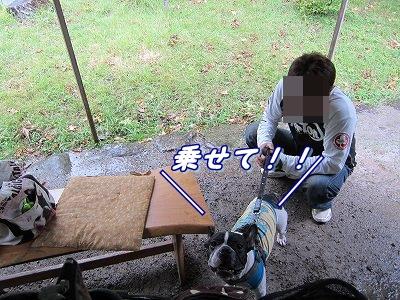 源泉 (14)