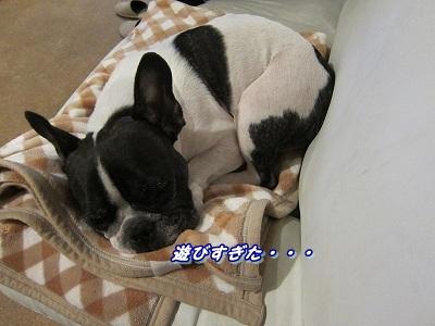 疲れた (1)