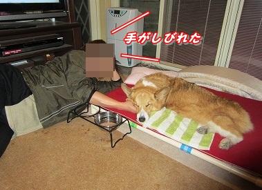 手枕 (2)