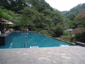足湯テラス席の前の観賞用プール