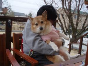 私、パパに抱っこ~
