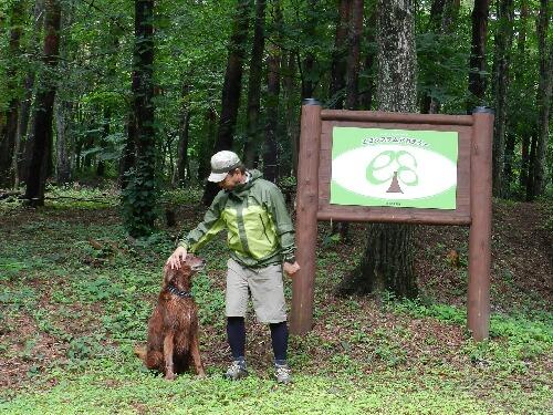 治山の森散策 3