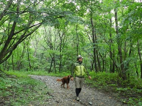 治山の森散策