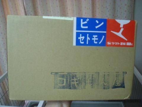CIMG6395 (480x360)
