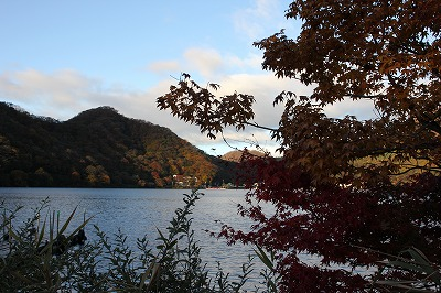 shuku-IMG_2501.jpg